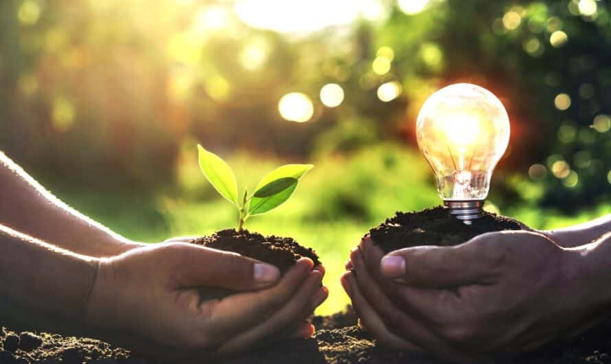 Bio énergie : qu'est ce que c'est ?